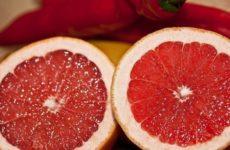 Грейпфрут оказался способен предотвратить рак