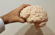Психиатр рассказал, как замедлить возрастной упадок функций мозга
