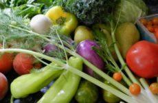 Диетолог назвал болезни, при которых лучше отказаться от употребления сырых овощей