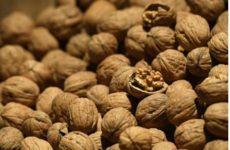 Названа безопасная норма орехов в день