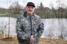 Лукашенко заявил об эффективности «так называемой диктатуры» и порядка